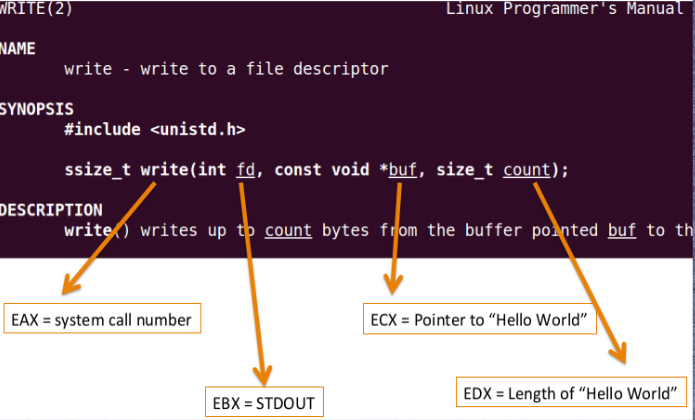 A Guide To x86 Assembly